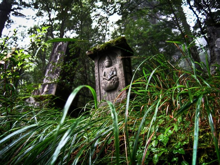 fuji relics
