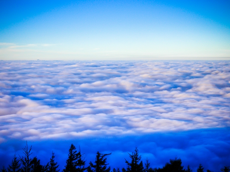 cloud sea mount fuji